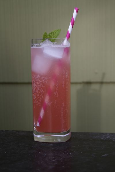 Rhubarb soda :) | the one with all the food | Pinterest