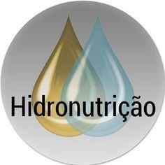 Hidro - nutrição no Cronograma Capilar