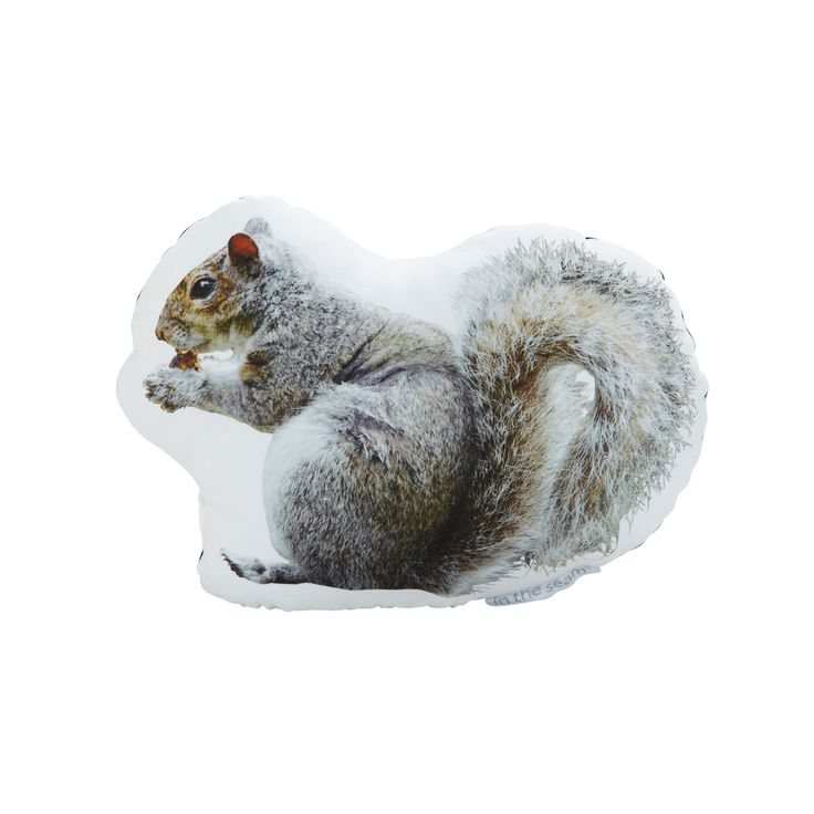 """Handmade in Brooklyn, this  quirky """"couch art"""" pillow is decorated with an original large-as-life photograph of a squirrel in Central Park, and then printed on cotton sateen, hand stuffed and sewn onto...  Find the Central Park Squirrel Pillow, as seen in the Chronicles of the Modern Explorer Collection at http://dotandbo.com/collections/chronicles-of-the-modern-explorer?utm_source=pinterest&utm_medium=organic&db_sku=89964"""