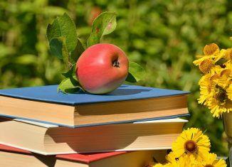 Vara plină de amintiri și cărţi de dragoste