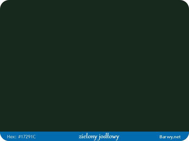 Kolor RGB HEX 17291C - zielony jodłowy - Fir green - Tannengrün - Vert sapin - zieleń jodłowa - Barwy.net