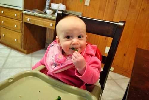 baby led weaning. interesting!