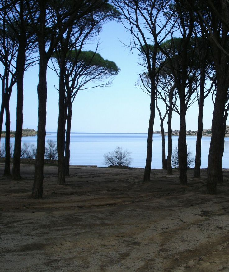 Sardinia, Caprera island.