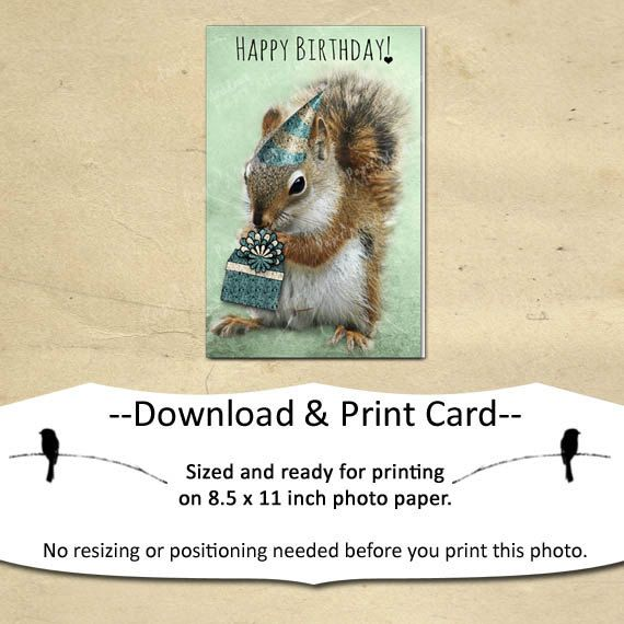 Sweet Birthday Card for your little boy.
