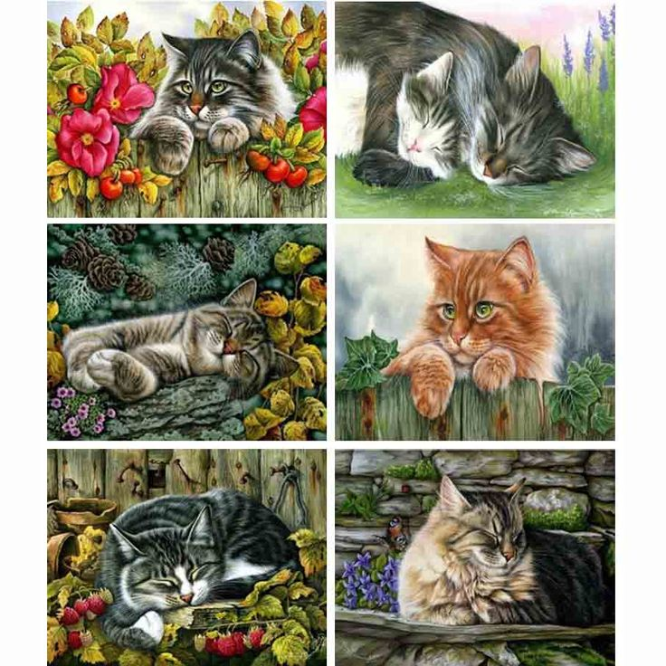 Cheap kit banks, Buy Quality kit anime directly from China kit bulk ink hp Suppliers: Diamond embroidery cat mosaic crafts square full diamond diy painting pattern rhinestones kits for needlework GA0165