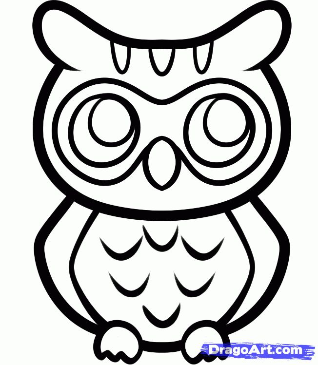 How to Draw an Anime Owl, Step by Step, anime animals, Anime, Draw Japanese Anime, Draw Manga, FREE Online Drawing Tutorial, Added by Dawn, ...