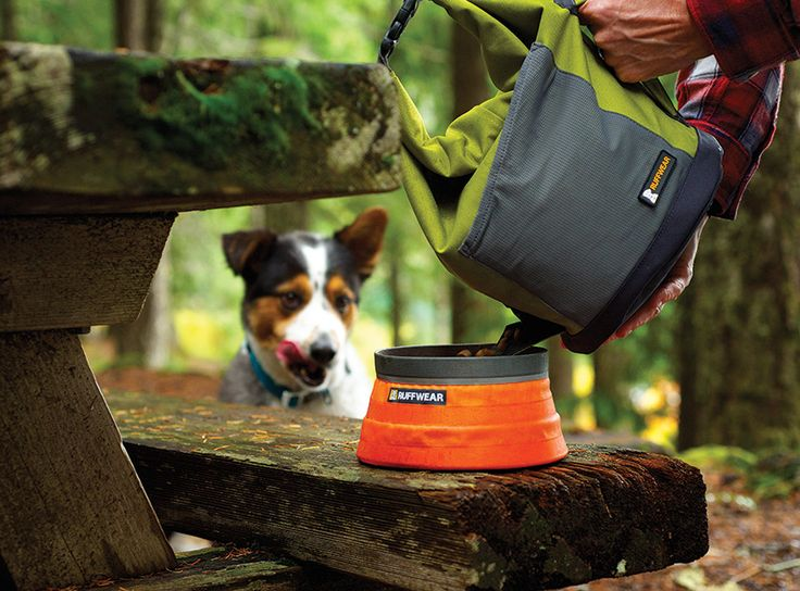The Ruffwear Kibble Kaddie is a travel-friendly dog food storage bag. The compact, convenient design allows for easy transport, storage and dispensing of kibble. The top-loading, roll-down closure secures contents and reduces volume of the bag as food is consumed. Kibble is dispensed through the side-mounted food chute. External stash pocket fits collapsible bowls and other adventure essentials.