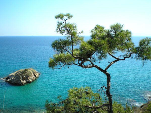 Λιμενάρια | Παραλίες | Φύση | Θάσος | Περιοχές | WonderGreece.gr