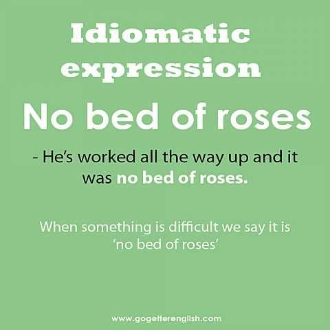 English #idiomatic #expression [no bed of roses]