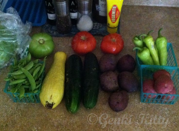 Corey Lake Orchards Grocery Haul 2015