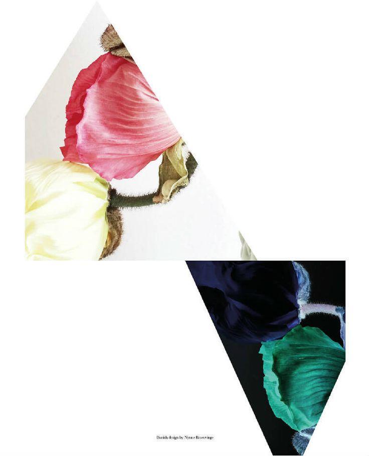 Art No 69 Flower Mirror (Edt. 18)