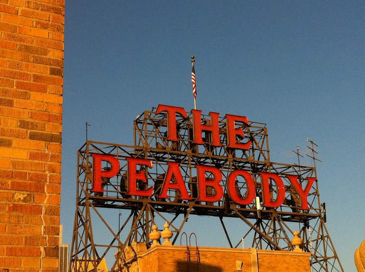11 best peabody hotel images on pinterest peabody hotel for Luxury hotels in memphis tn