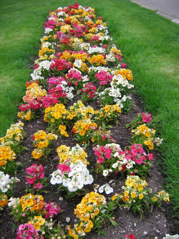 Tips To Get The Beauty Flower Bed Design Colorful Flower