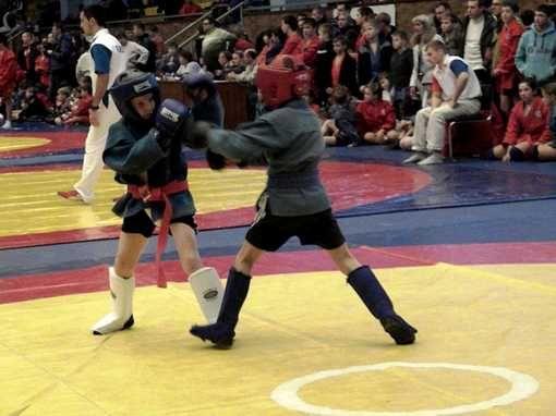 Бодибилдинг, Парашютный спорт, Мотобол, Бейсджампинг. (1/1) - Спортивный форум. - Спортивный сайт