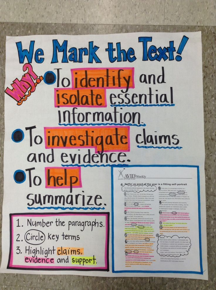 Great anchor chart for marking the text.