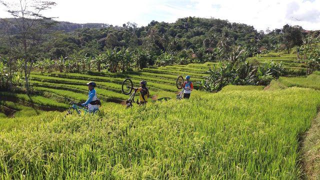 FreeRider MTB Community: Rute MTB kawasan Bogor Barat Part I