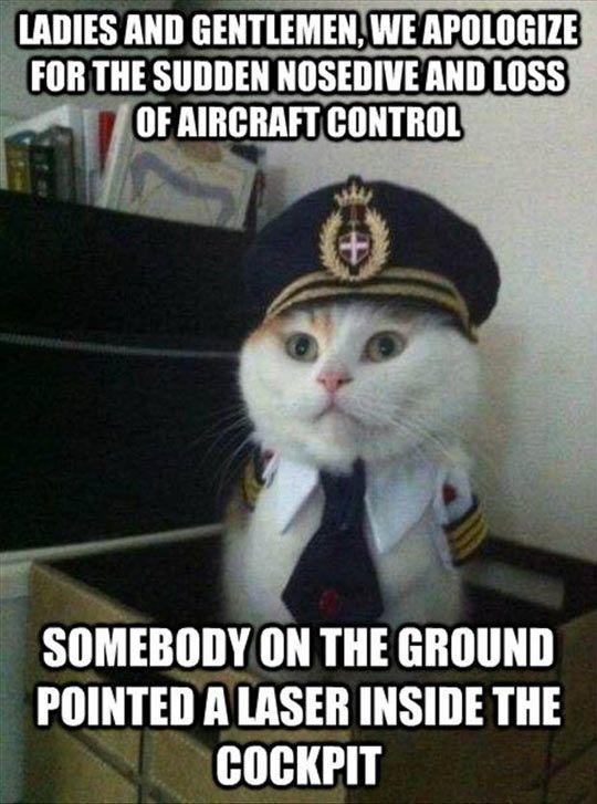 61c5722e6d8c8ad34e2834a2eea7eb47 funny jokes funny pics 1850 best meme images on pinterest funny stuff, funny memes and,Funny Arab Meme Airplane