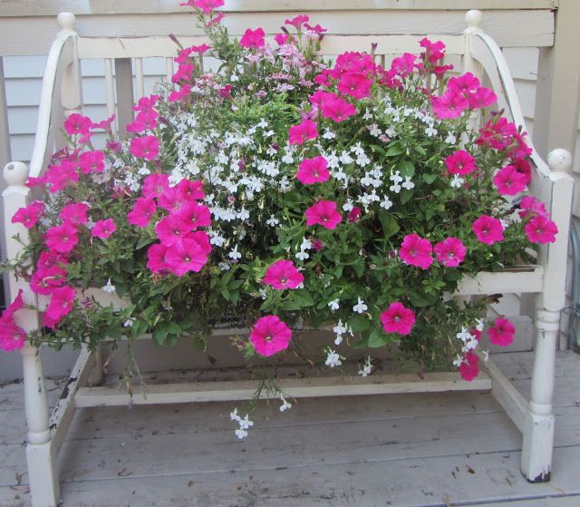 Quiet Corner Container Gardening Ideas: 447 Best Images About Gardens / Containers , Planters