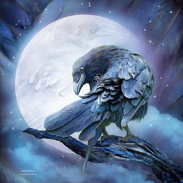 Raven Messenger sent from the moon And beyond To help me understand And embrace The healing power of darkness And light A difficult truth Without death There is no rebirth Without night There is No awakening No insight No moving toward the light.  Raven Moon prose by Carol Cavalaris  This artwork of two ravens, one turned and looking at the viewer is from the Spirit Of The Wild - Birds of Prey collection of art by Carol Cavalaris.