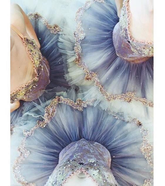 Whenever a dancer stands it is a holy ground -Martha Graham-♡Princess Helen♡