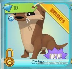 Animal Jam Otter Codes animal-jam-otter-codes-8  #AnimalJam #Animals #Otter http://www.animaljamworld.com/animal-jam-otter-codes/