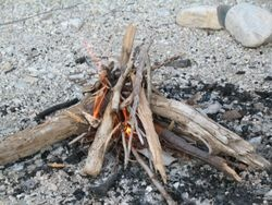 Campfire starter recipes - easiest one is probably #2 = dryer lint, wax, and egg carton