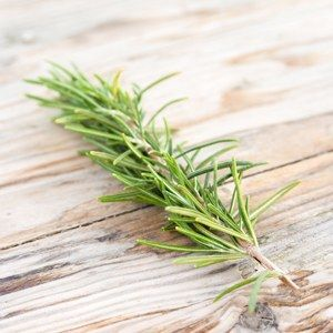 Lifestyle - Rosemary Delight