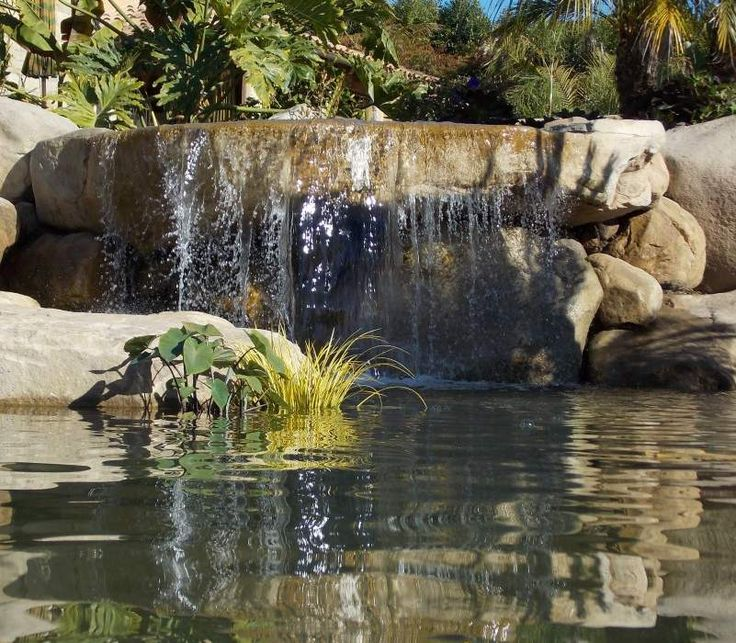 Natural Inspiration Koi Pond Design Ideas For A Rich And: 78+ Images About Backyard Waterfalls And Streams On