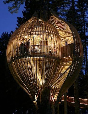 15 Unique And Extraordinary Places You should Visit -  Treehouse Restaurant, New Zealand