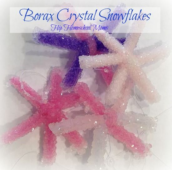 This Christmas science experiment takes a little while, but it's worth it to wow your kids with how Borax makes snow crystals out of pipe cleaner ornaments!