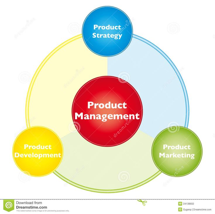 best product management model Product management organization  structured according to product line or areas business model is  product managementbe the best way forwardthe.