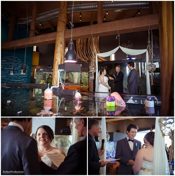 Ucluelet Aquarium Wedding Ceremony