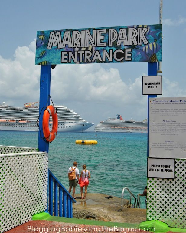 Grand Cayman on the Cheap - Cruise Excursion Guide A Day at Grand Cayman Island BayouTravel CruisingCarnival