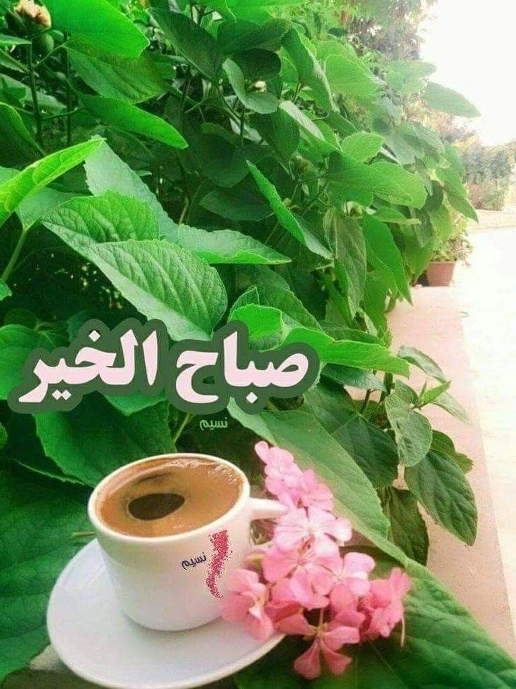 ﺻﺒﺎﺡ ﺍﻟﻤﺪﻥ ﺍﻟﺘﻲ ﺗﺴﺘﻴﻘﻆ ﻋﻠﻰ ﺭﺍﺋﺤﺔ ﺍﻟﻘﻬﻮﺓ ﻭﺍﻟﻘﻠﻮﺏ ﺍﻟﺘﻲ ﺗﺸﺮﻉ ﺷﺒﺎﺑﻴﻜﻬﺎ ﻟﻠﺤﺐ ﻗﺒﻞ ﺍﻟﻀﻮ Good Morning Beautiful Images Good Morning My Friend Good Morning Beautiful