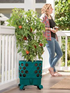 17 Best Ideas About Self Watering Pots On Pinterest Self