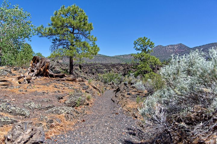USA Südwesten Reisetipps: Sunset Crater Volcano National Monument Arizona