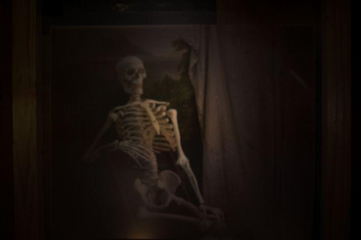 Skeleton- Camera Obscure