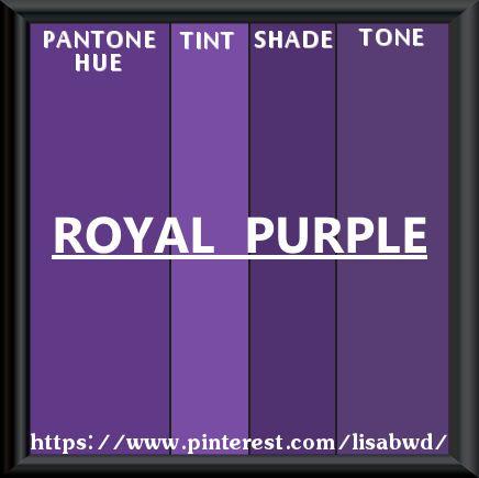 PANTONE SEASONAL COLOR SWATCH ROYAL PURPLE