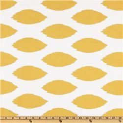 """Great accent fabric for kitchen...would be great """"laminated"""" for chair cushions"""