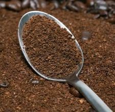 what the what? how to grow mushrooms in coffee grounds?