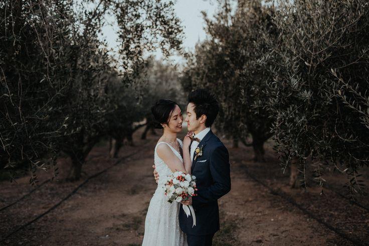 Pialligo Estate Wedding   Canberra Wedding Photographer