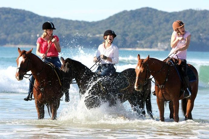 There's more to do at the Sunshine Coast than swim! Go horse riding along the beach at Noosa North Shore with Equathon Horse Riding #thisisqueensland