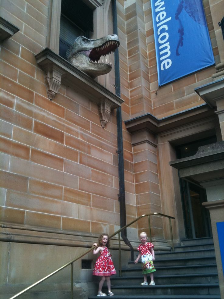 The Australian Museum on College St, Sydney, is a firm favourite in the Hungry House. Dinosaurs, minerals, skeletons plus a hands-on research area. Love it.