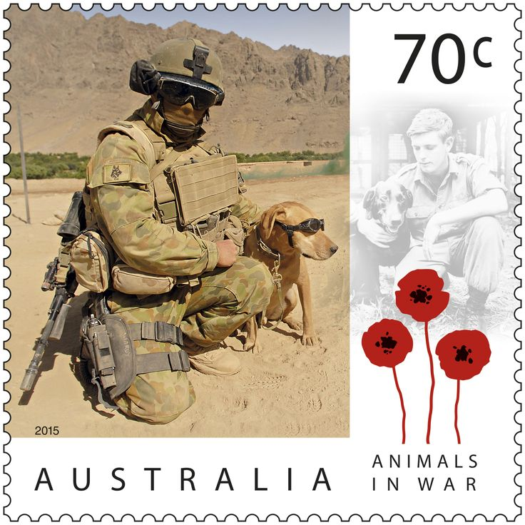 In the lead-up to Remembrance Day, this stamp issue commemorates the valour and sacrifice made by countless animals during Australia's involvement in war. Buy in-store or online: http://auspo.st/1N3vtLA #StampCollecting #AustralianStamps #AnimalsinWar