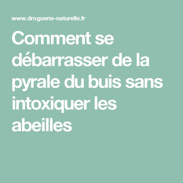 15 pingles pyrale du buis incontournables chenille du buis diy jardin et - Comment se debarrasser du salpetre ...