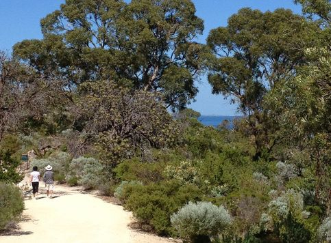 The 5 Best Hikes Near Perth Western Australia
