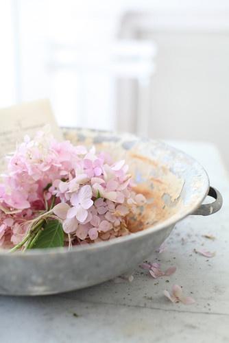 Great idea - float a hydrangea bloom in a vintage bowl.