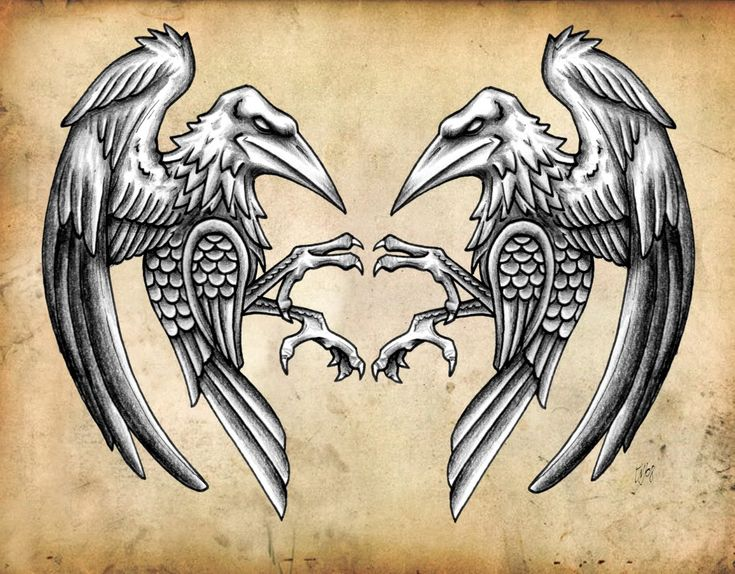 Norse Ravens, Ravens where just as special to the Vikings as there knotwork was…