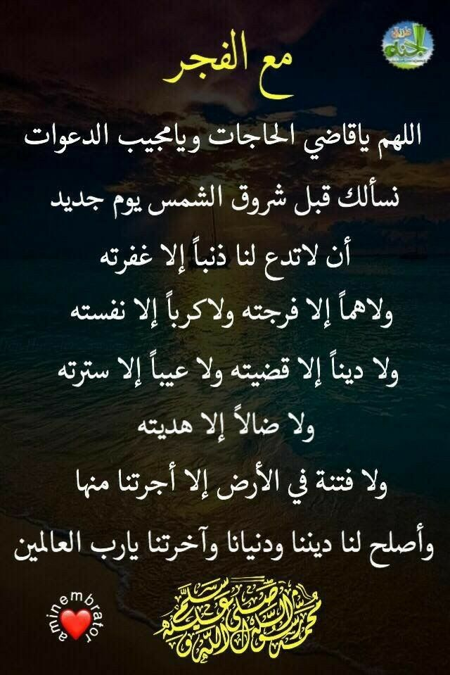 Pin By Suha A On ادعية Islamic Love Quotes Islamic Quotes Quran Quotes