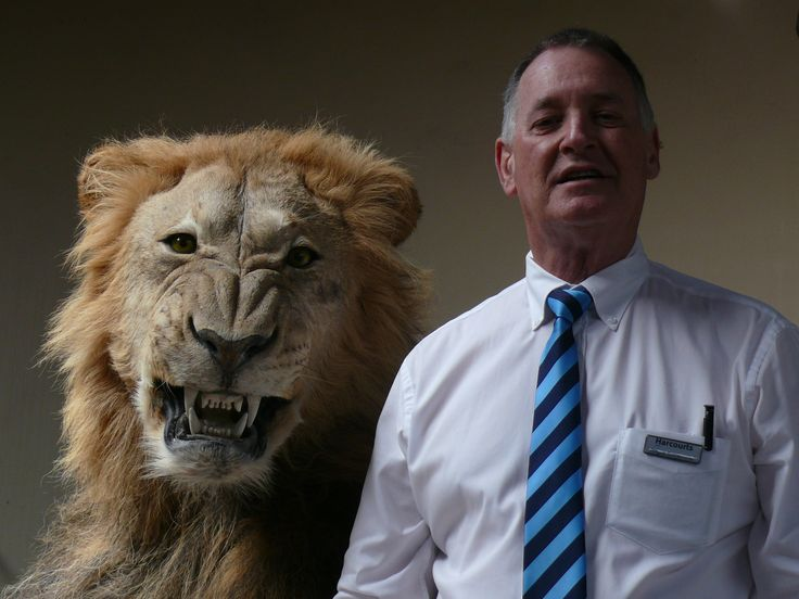 Courage does not always roar #harcourts #portalfred #funandlaughter…